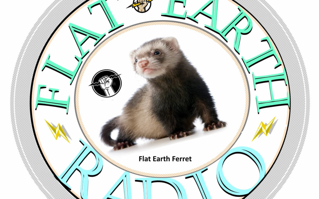 Finding the Ferret for FER Live