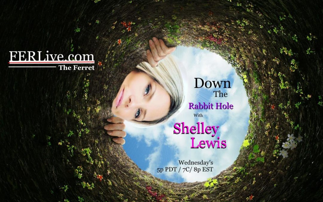 Down The Rabbit Hole with Shelley Lewis