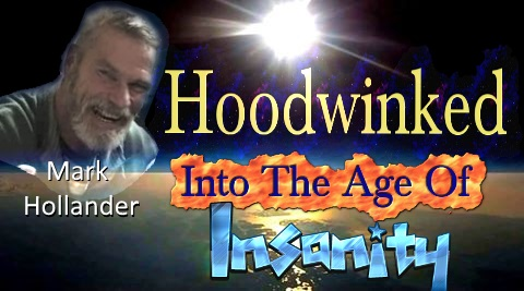 Mark Hollander, Hoodwinked Into An Age of Insanity